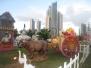 Panama, Dec 2011
