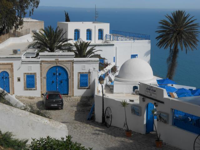 From Carthage we took a taxi just a few km away to the picturesque and turistic village of Sidi Bou Said. Wth it's narrow streets, all blue and white houses and lots of bugenvilea.