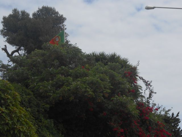while walking through the new part of town in Carthage, I was surprised to see my country flag. The Portuguese Embassy building was surrounded by beautiful gardens.