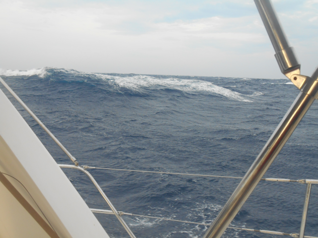 One of the waves in 25 - 30kts winds that we caught for some surfing!