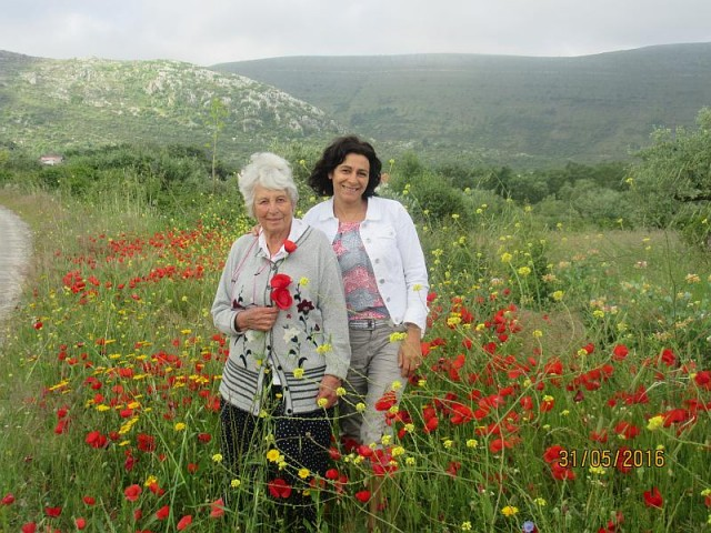 Mum enjoying the poppies in rural Portugal